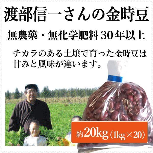 北海道産 無農薬金時豆 - 渡部信一さんの金時豆約20kg(約1kg×20袋) 無農薬・無化学肥料栽培30年の美味しい金時豆 渡部信一さんは化学薬品とは無縁の生産者