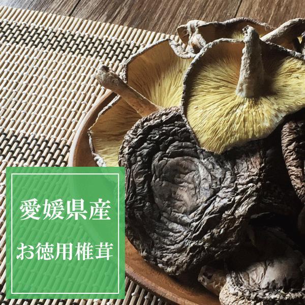 国産 原木乾燥椎茸 ワレ・欠けあり B品お徳用 65g 保存食