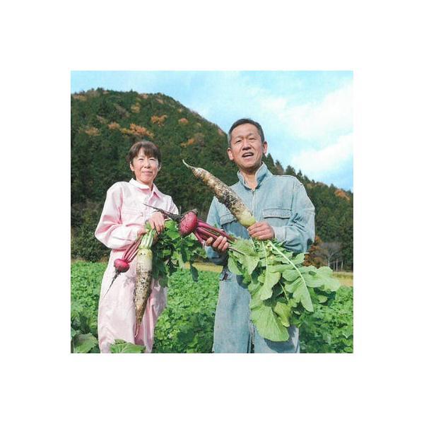 有機にんにくパウダー 有機JAS認定 丹波産自然栽培にんにく100%使用。西日本 野菜|tanba-shinotaro|03