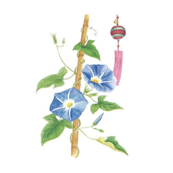 河出書房新社 やさしい大人の塗り絵 いきいきと咲く花編 1冊 お取寄せ