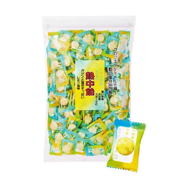 井関食品 熱中飴 レモン塩味 1kg 1袋