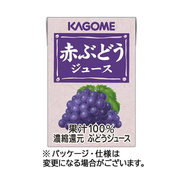 赤ぶどうジュース 100ml×36本 紙パック