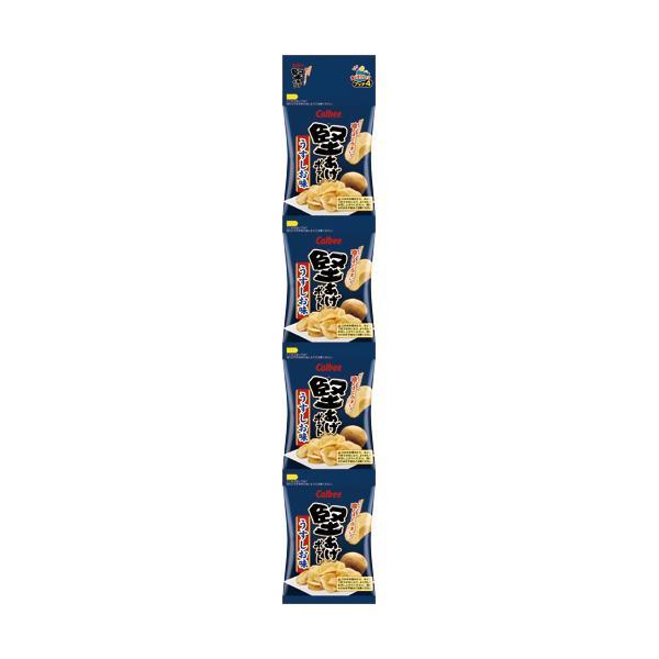 カルビー 堅あげポテト プッチ4 うすしお味 60g(15g×4袋)/パック 1セット(10パック)