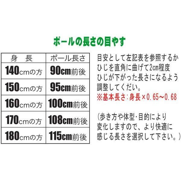 ウォーキングポール キザキ 男性向けサイズ 伸縮 2本1セット APAC-7202 tanosinia 04
