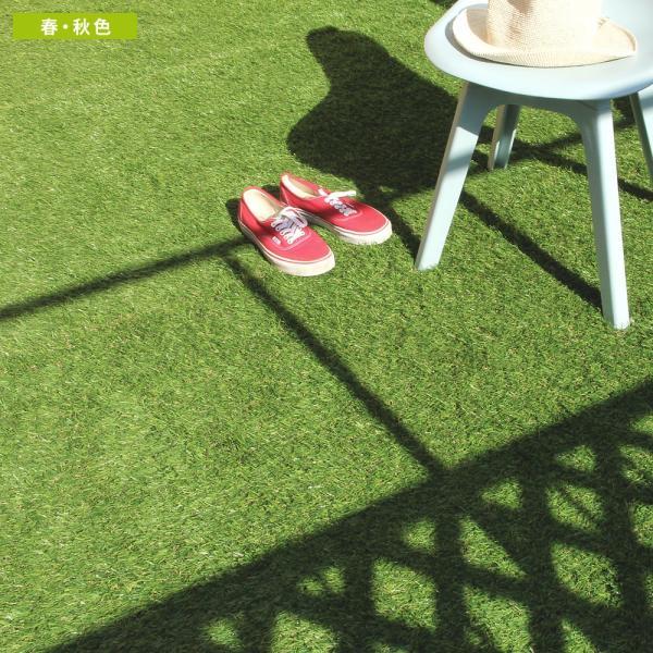 人工芝 ロール リアル人工芝 1m×10m 芝生 ガーデン ガーデニング|tansu|12