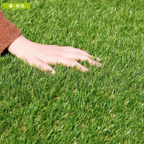人工芝 ロール リアル人工芝 1m×10m 芝生 ガーデン ガーデニング|tansu|16