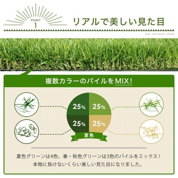人工芝 ロール リアル人工芝 1m×10m 芝生 ガーデン ガーデニング|tansu|03