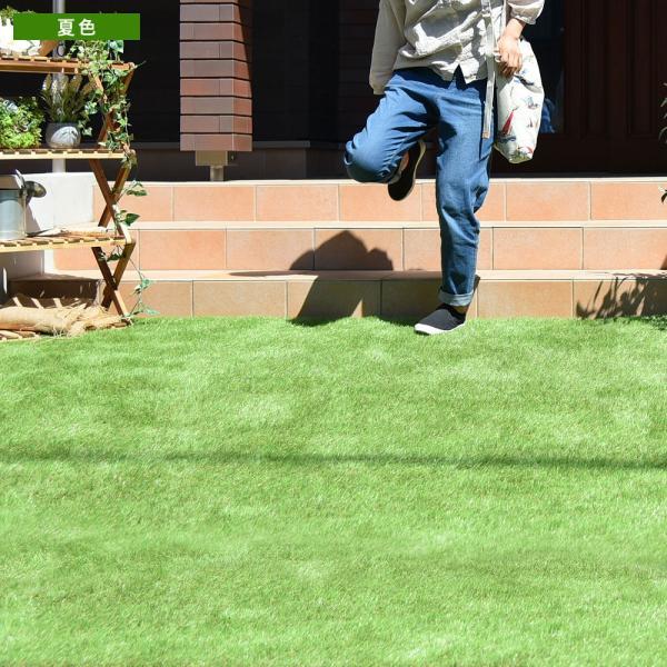 人工芝 ロール リアル人工芝 1m×10m 芝生 ガーデン ガーデニング|tansu|09