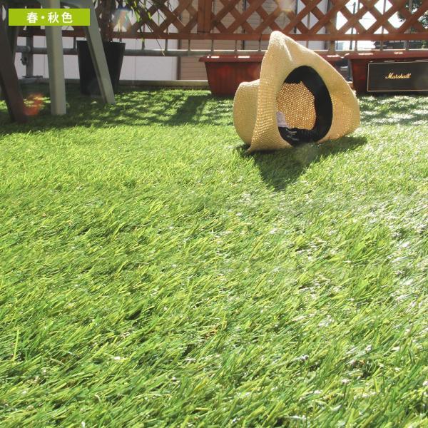 人工芝 ロール リアル人工芝 1m×10m 芝生 ガーデン ガーデニング|tansu|10