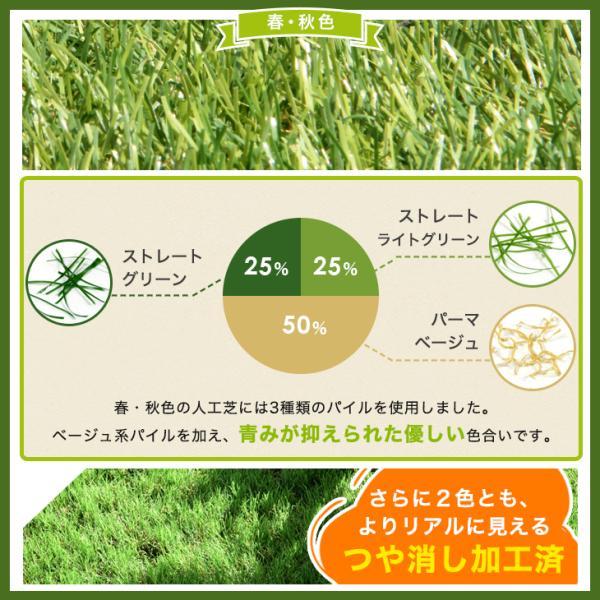 人工芝  ロール リアル人工芝 芝生 2個セット 1m×10m  芝丈35mm 芝生マット|tansu|12