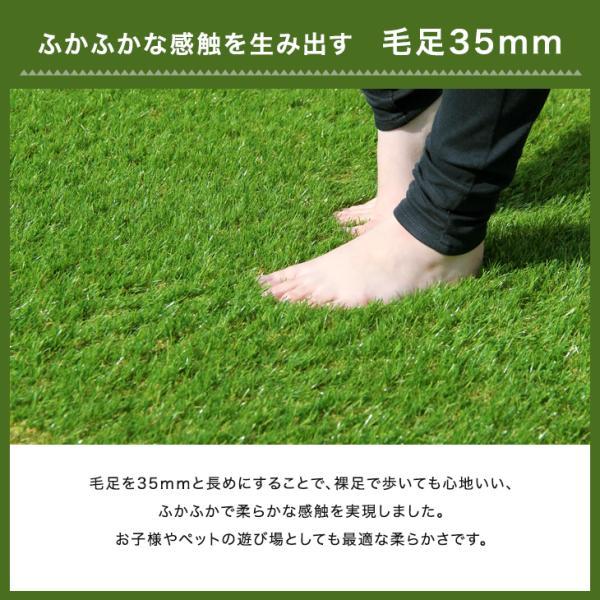 人工芝  ロール リアル人工芝 芝生 2個セット 1m×10m  芝丈35mm 芝生マット|tansu|10
