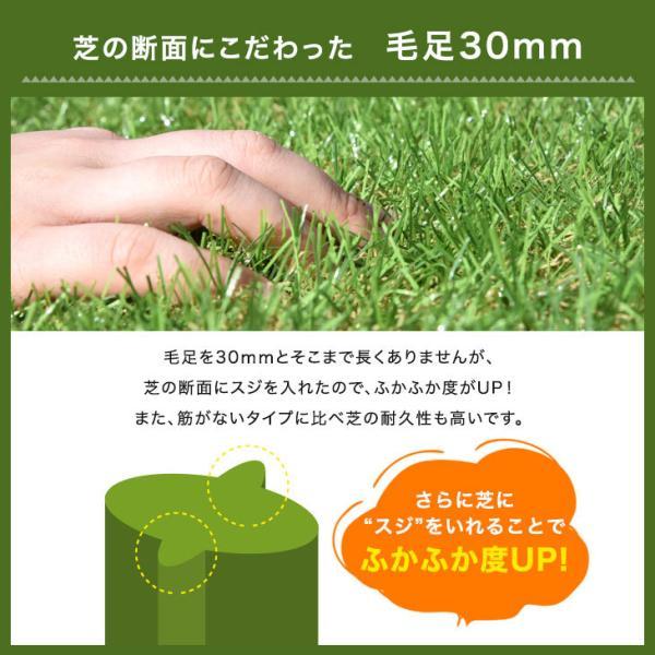 人工芝 ロール リアル人工芝 芝生 1m×10m ロールタイプ U字固定ピン20本入 芝丈30mm おしゃれ|tansu|03