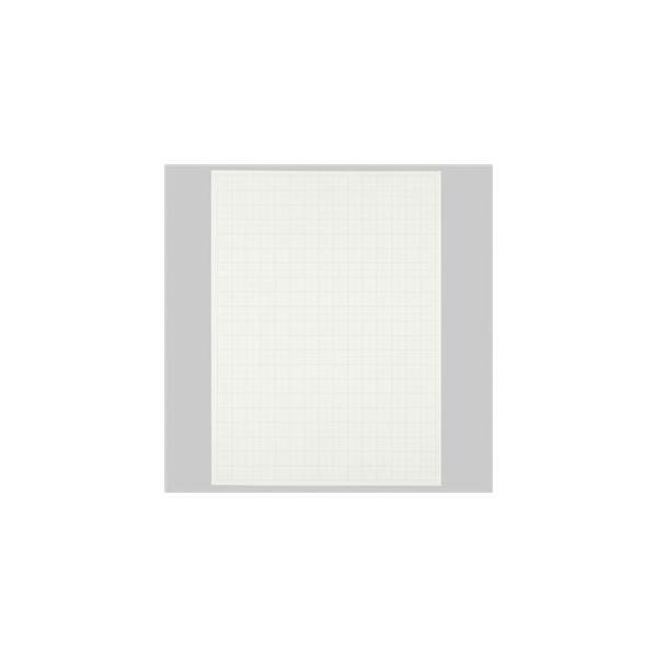 ds-1575544 (まとめ) TANOSEE 模造紙(プルタイプ) 本体 765×1085mm 無地 ホワイト 1ケース(20枚) 【×5セット】 (ds1575544)