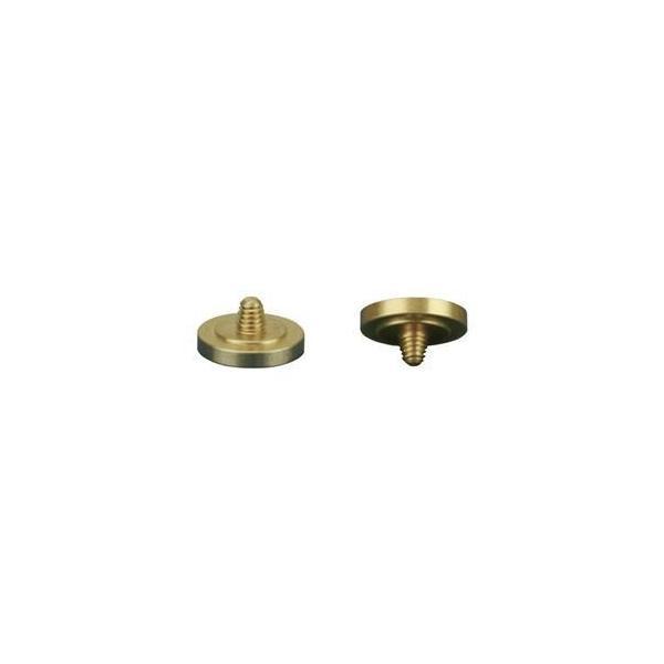 ds-2101308 (まとめ) JJC シャッターレリーズボタン ゴールド JJC-SRB-C11DGD 【×5セット】 (ds2101308)