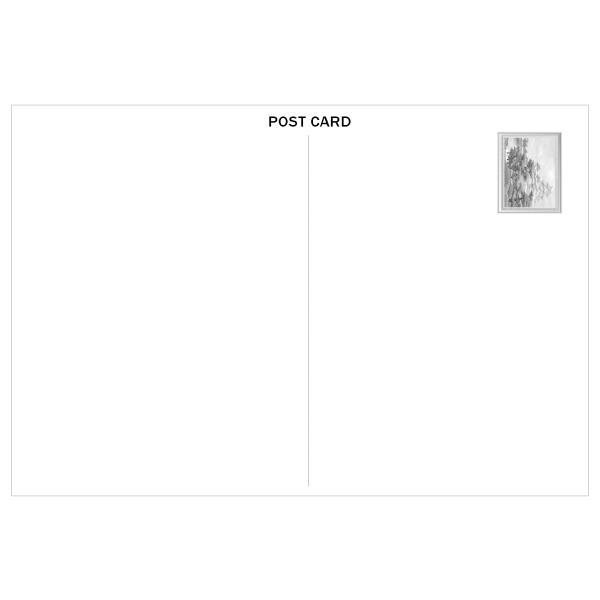 【姫路城】  ポストカード 日本の城 世界遺産 tanukinomori 02
