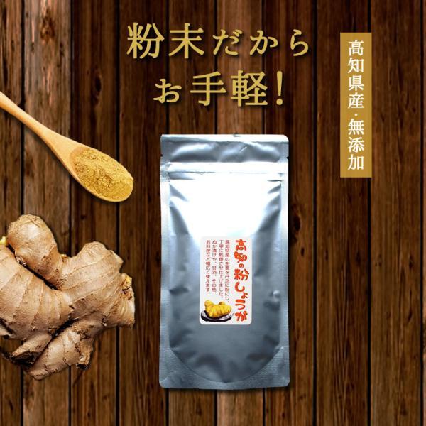 『高知の粉しょうが 50g』 しょうが 高知県産 粉末 無添加 ジンジャー パウダー 人気 おすすめ