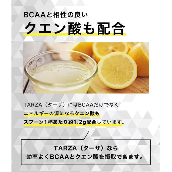 BCAA アミノ酸 クエン酸 パウダー TARZA(ターザ) マンゴー風味 40杯分 国産 500g tarza 11