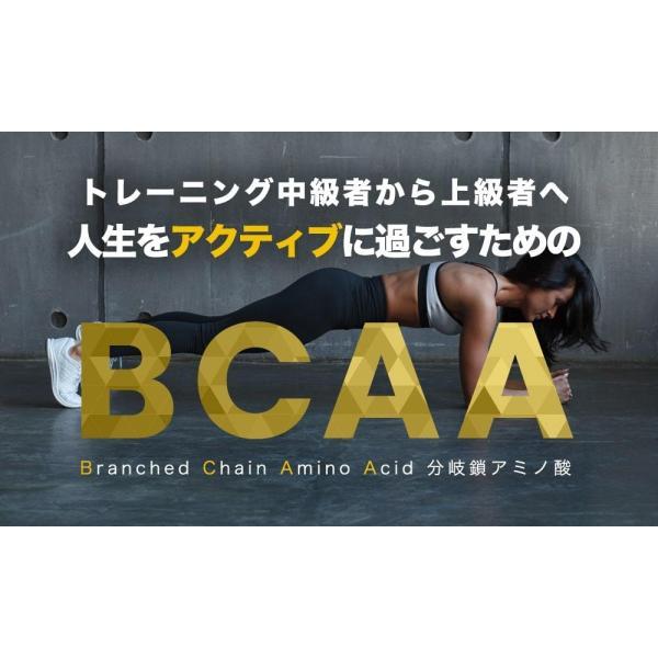 BCAA アミノ酸 クエン酸 パウダー TARZA(ターザ) マンゴー風味 40杯分 国産 500g tarza 06