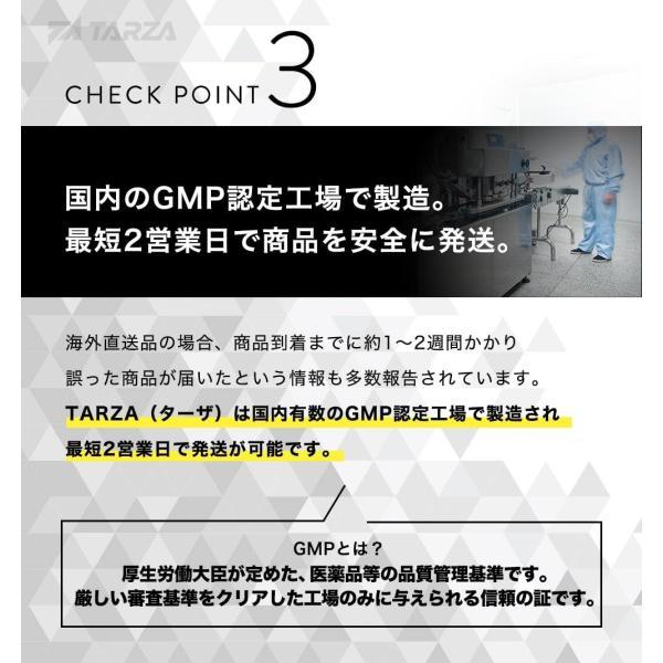 BCAA アミノ酸 クエン酸 パウダー TARZA(ターザ) マンゴー風味 40杯分 国産 500g tarza 09