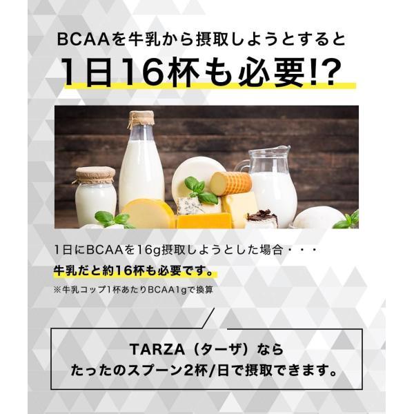 BCAA アミノ酸 クエン酸 パウダー TARZA(ターザ) マンゴー風味 40杯分 国産 500g tarza 10