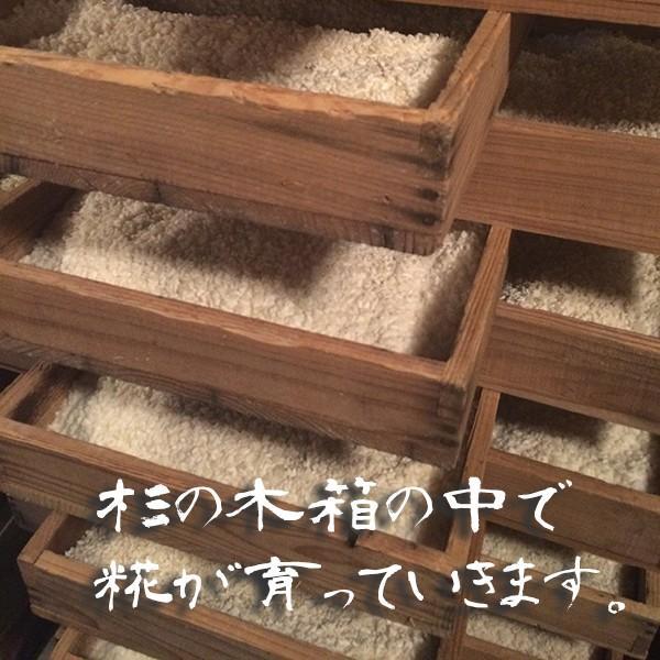 田清糀 1Kg   米農家の手作りこうじ 秋田県産米100%使用 taseishouten 02