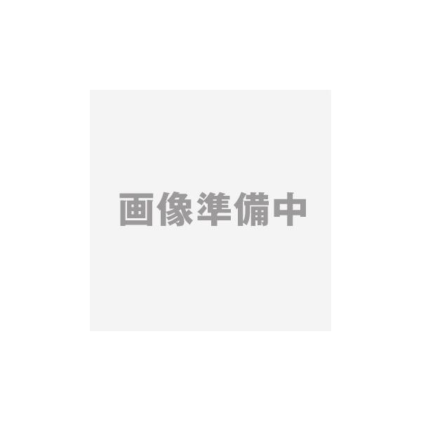 【代引き不可】 ボンベスタンド KBS15-2