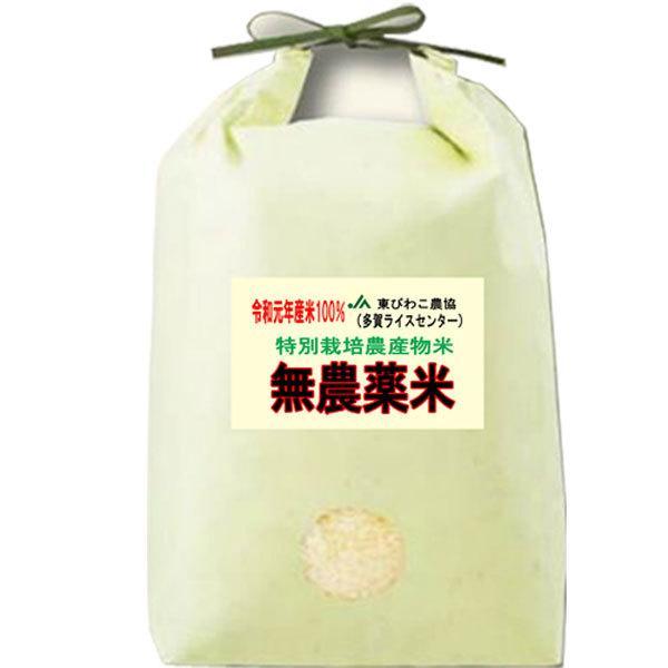 29年産 無農薬米 滋賀県産 コシヒカリ 5kg 無農薬栽培米 送料無料 玄米 白米 7分づき 5分づき 3分づき お好みに精米します|tawaraya-kome|02