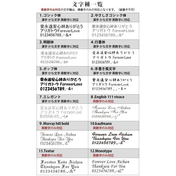 ウィズ ステンレス 刻印あり ノンアレルギー ステンレス製 遺骨ペンダント ペット 大容量 防水仕様 遺骨 アクセサリー|temotokuyouhonpo|16