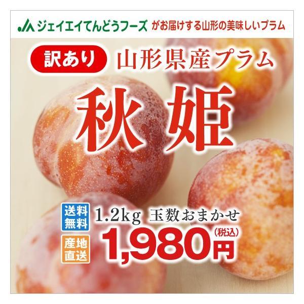 訳あり すもも 山形県産 プラム 秋姫 約1.2kg ご自宅用 わけあり スモモ