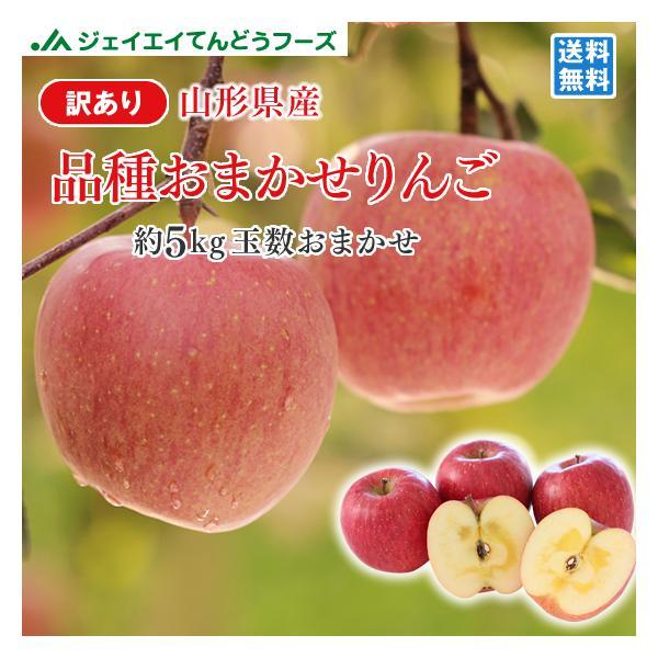 りんご 訳あり 品種おまかせ 約5kg リンゴ ご自宅用 山形県産 林檎 山形 (一部地域別途送料) ap12 ※11月中旬頃から順次発送