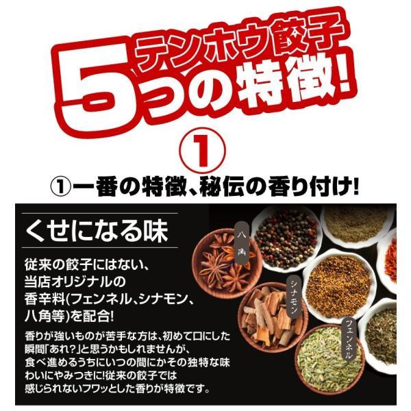 餃子 テンホウ餃子 総重量1kg超|tenhoo|02