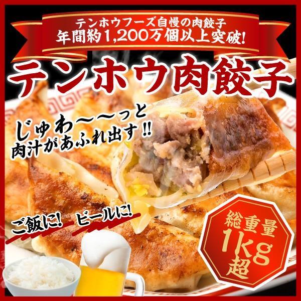 餃子 肉餃子 総重量1kg超|tenhoo