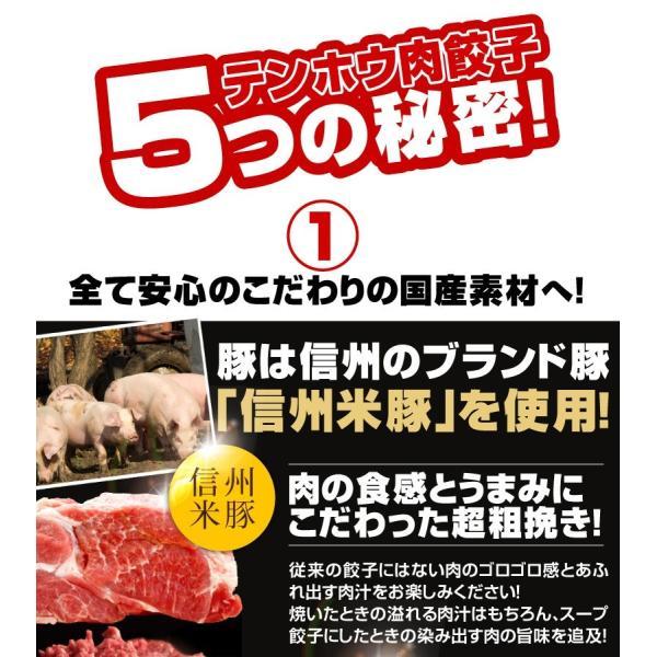 餃子 肉餃子 総重量1kg超|tenhoo|02