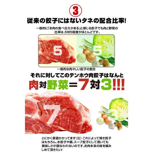 餃子 肉餃子 総重量1kg超|tenhoo|05