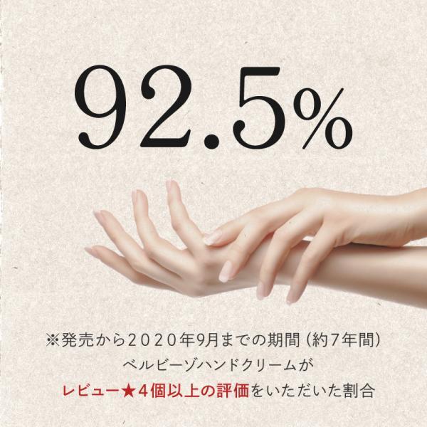 ハンドクリーム 日本食ハンドクリーム 40g 無香料 チューブ ミニサイズ メール便 BELVISO (ベルビーゾ)角質ケア|tenman-hompo|02