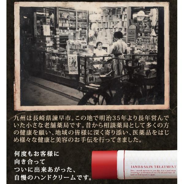 ハンドクリーム 日本食ハンドクリーム 40g 無香料 チューブ ミニサイズ メール便 BELVISO (ベルビーゾ)角質ケア|tenman-hompo|06