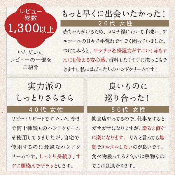 ハンドクリーム 日本食ハンドクリーム 40g 無香料 チューブ ミニサイズ メール便 BELVISO (ベルビーゾ)角質ケア|tenman-hompo|07