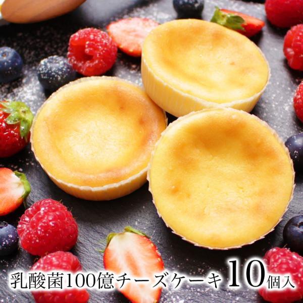 送料無料 チーズケーキ スイーツ 1000円 ポッキリ ポイント消化 お試し 個包装 お菓子 訳あり プチギフト 乳酸菌100億チーズケーキ10個入|tenshi-okurimono