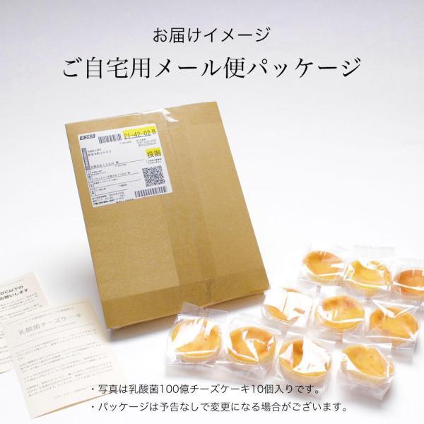 送料無料 チーズケーキ スイーツ 1000円 ポッキリ ポイント消化 お試し 個包装 お菓子 訳あり プチギフト 乳酸菌100億チーズケーキ10個入|tenshi-okurimono|11