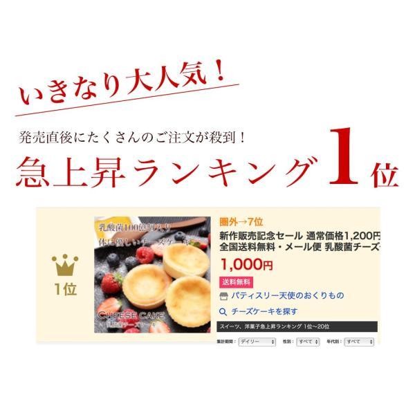 送料無料 チーズケーキ スイーツ 1000円 ポッキリ ポイント消化 お試し 個包装 お菓子 訳あり プチギフト 乳酸菌100億チーズケーキ10個入|tenshi-okurimono|02