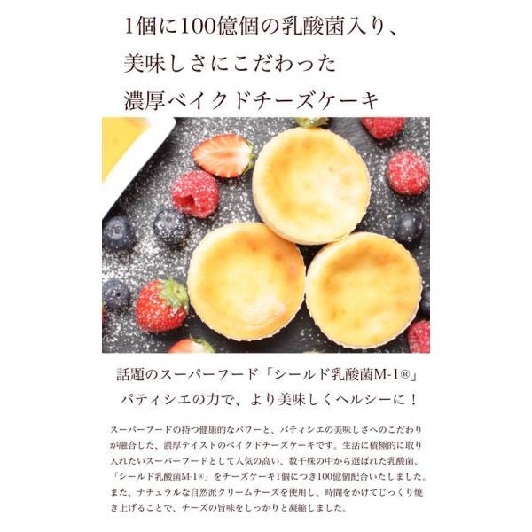 送料無料 チーズケーキ スイーツ 1000円 ポッキリ ポイント消化 お試し 個包装 お菓子 訳あり プチギフト 乳酸菌100億チーズケーキ10個入|tenshi-okurimono|05