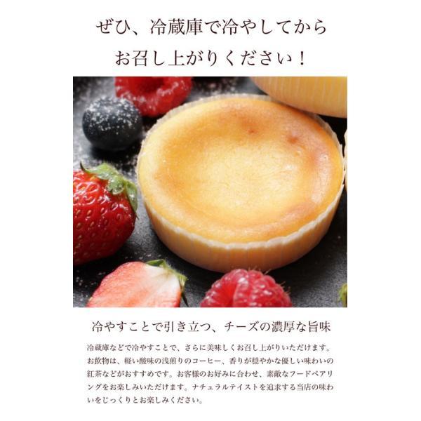 送料無料 チーズケーキ スイーツ 1000円 ポッキリ ポイント消化 お試し 個包装 お菓子 訳あり プチギフト 乳酸菌100億チーズケーキ10個入|tenshi-okurimono|06
