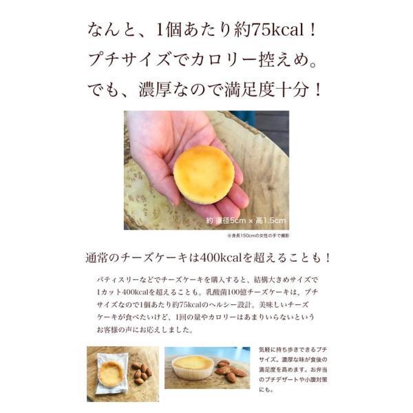送料無料 チーズケーキ スイーツ 1000円 ポッキリ ポイント消化 お試し 個包装 お菓子 訳あり プチギフト 乳酸菌100億チーズケーキ10個入|tenshi-okurimono|07