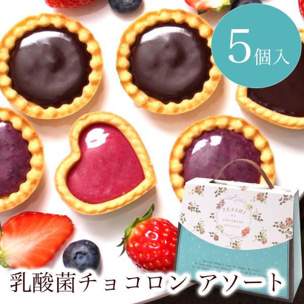 プチギフトお菓子退職引越個包装お礼/乳酸菌チョコロンアソート5個入