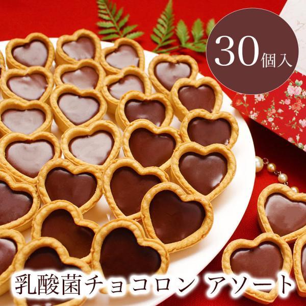 プチギフトお菓子退職引越個包装お礼/乳酸菌チョコロンアソート30個入