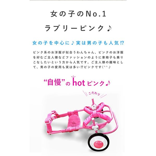 犬の車椅子 Mサイズ ピンク 介護 後脚サポート車椅子 車いす コーギー フレブル |tenshinowa1224|05