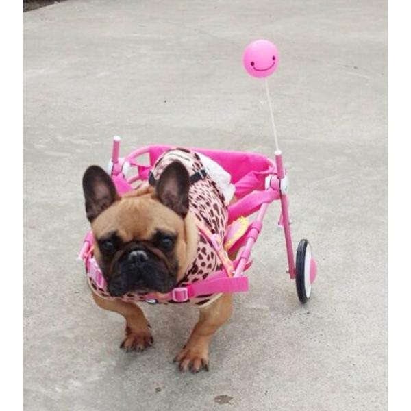 犬の車椅子 Sサイズ スマイルピンク 介護 後脚サポート車椅子 車いす 犬用|tenshinowa1224|03