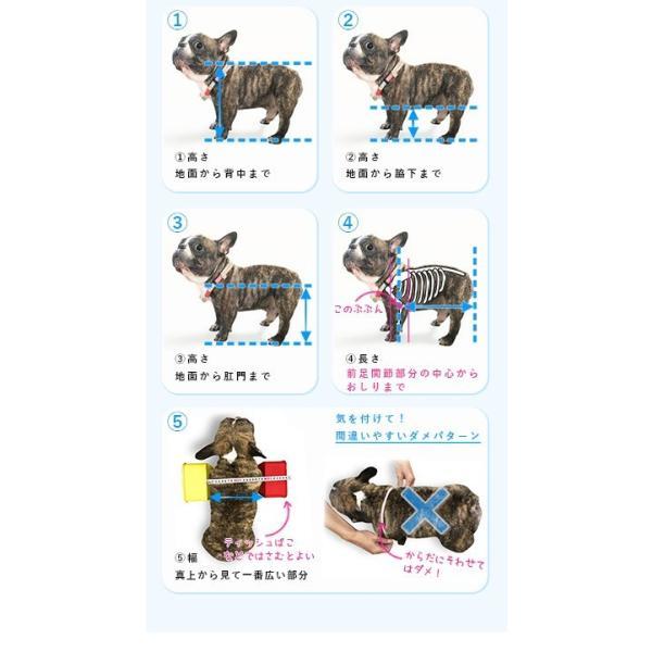 犬の車椅子 Sサイズ イエロー 介護 後脚サポート車椅子 車いす 犬用|tenshinowa1224|12