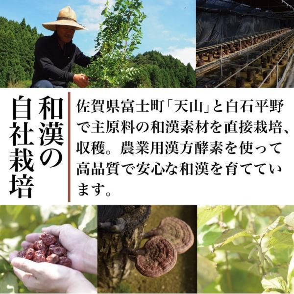 天山本草 スリム酵素 900ml 和漢 プレミアム ダイエット 酵素ドリンク 無添加 発酵飲料 自然 30日分 |tenzanhonso|02