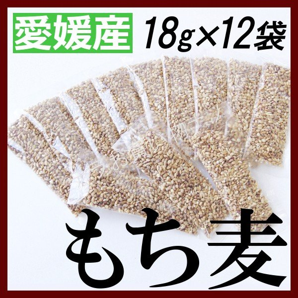 もち麦 国産 小分け 愛媛県産 18g×12袋 雑穀米 これぞ日本のもち麦 β-グルカン 媛もち麦 四国産